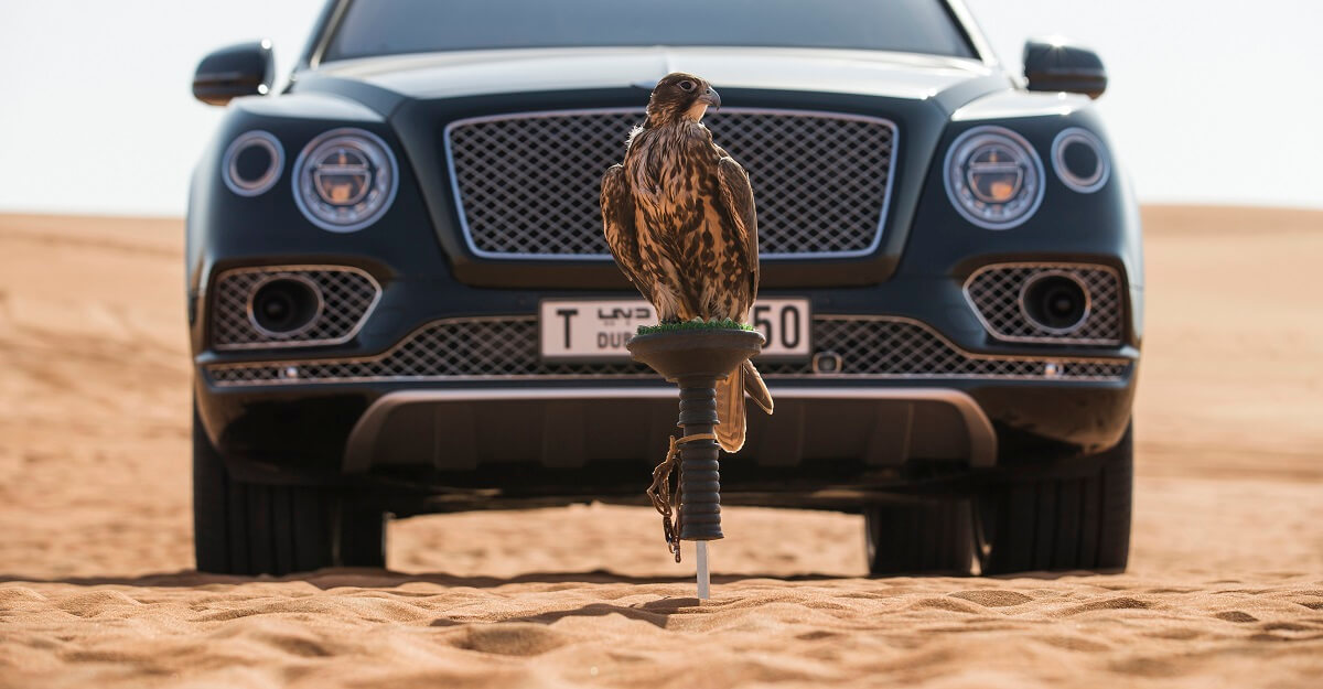 Bentley Bentayga Falconry by Mulliner (18).jpg