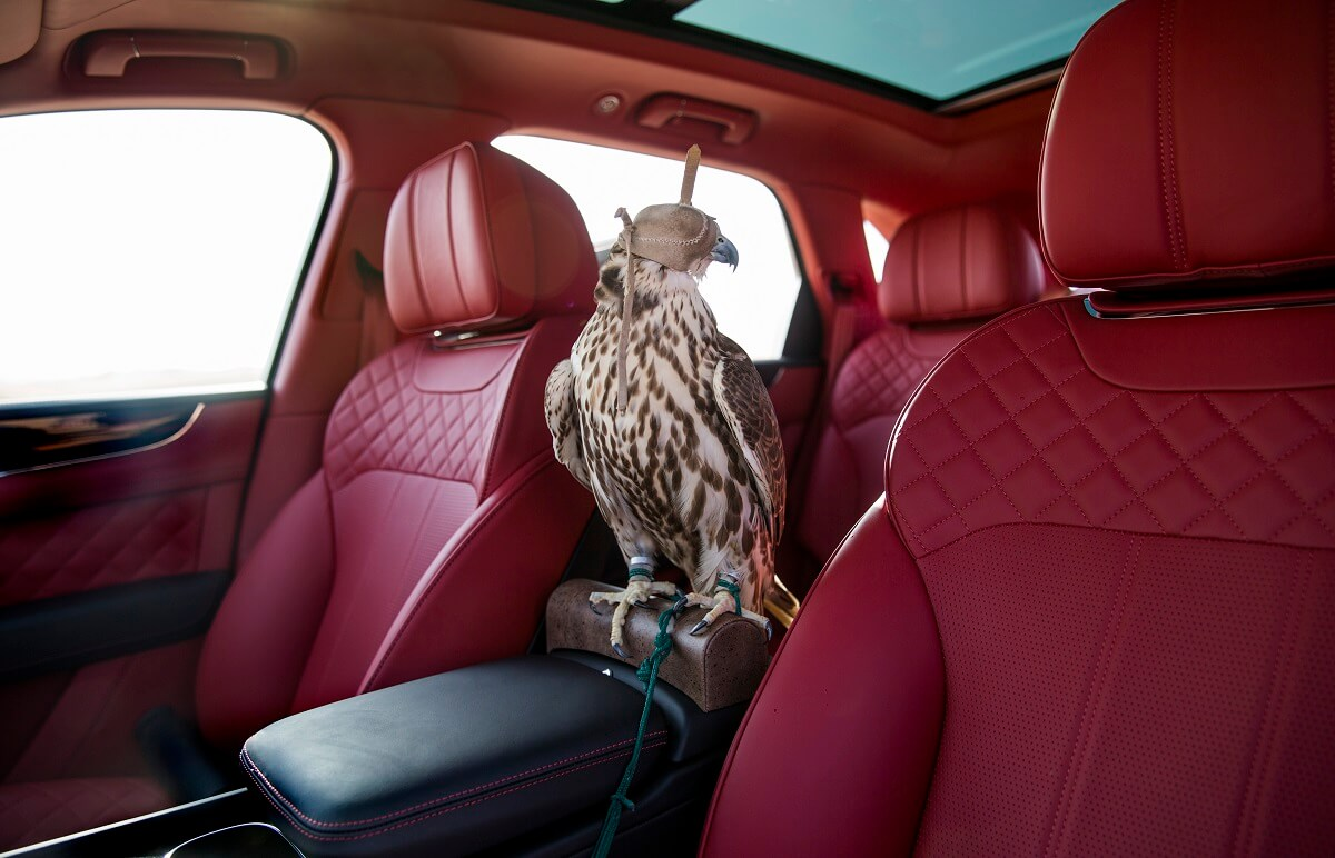 Bentley Bentayga Falconry by Mulliner.jpg