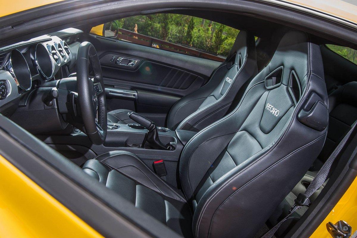 Mustang-6.jpg