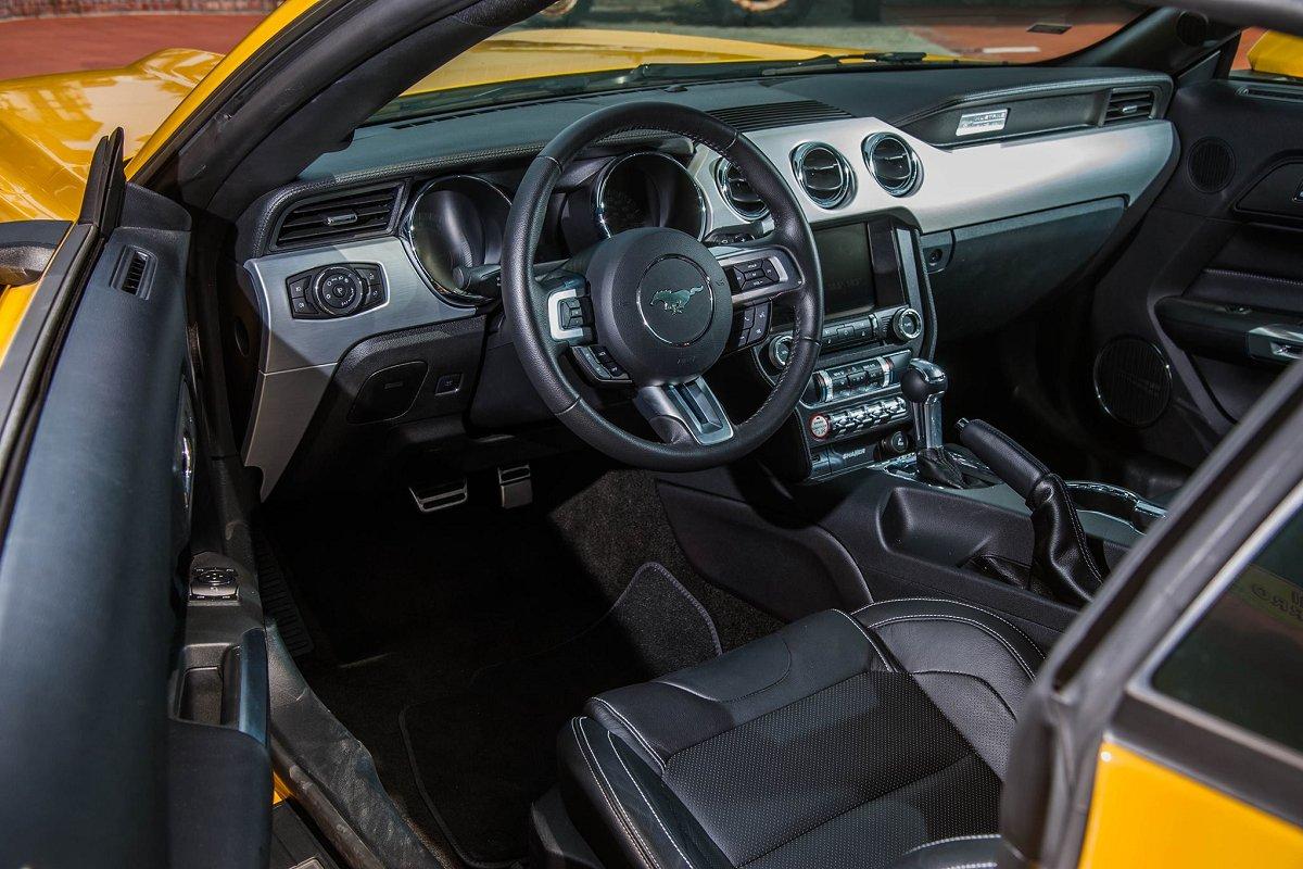 Mustang-8.jpg