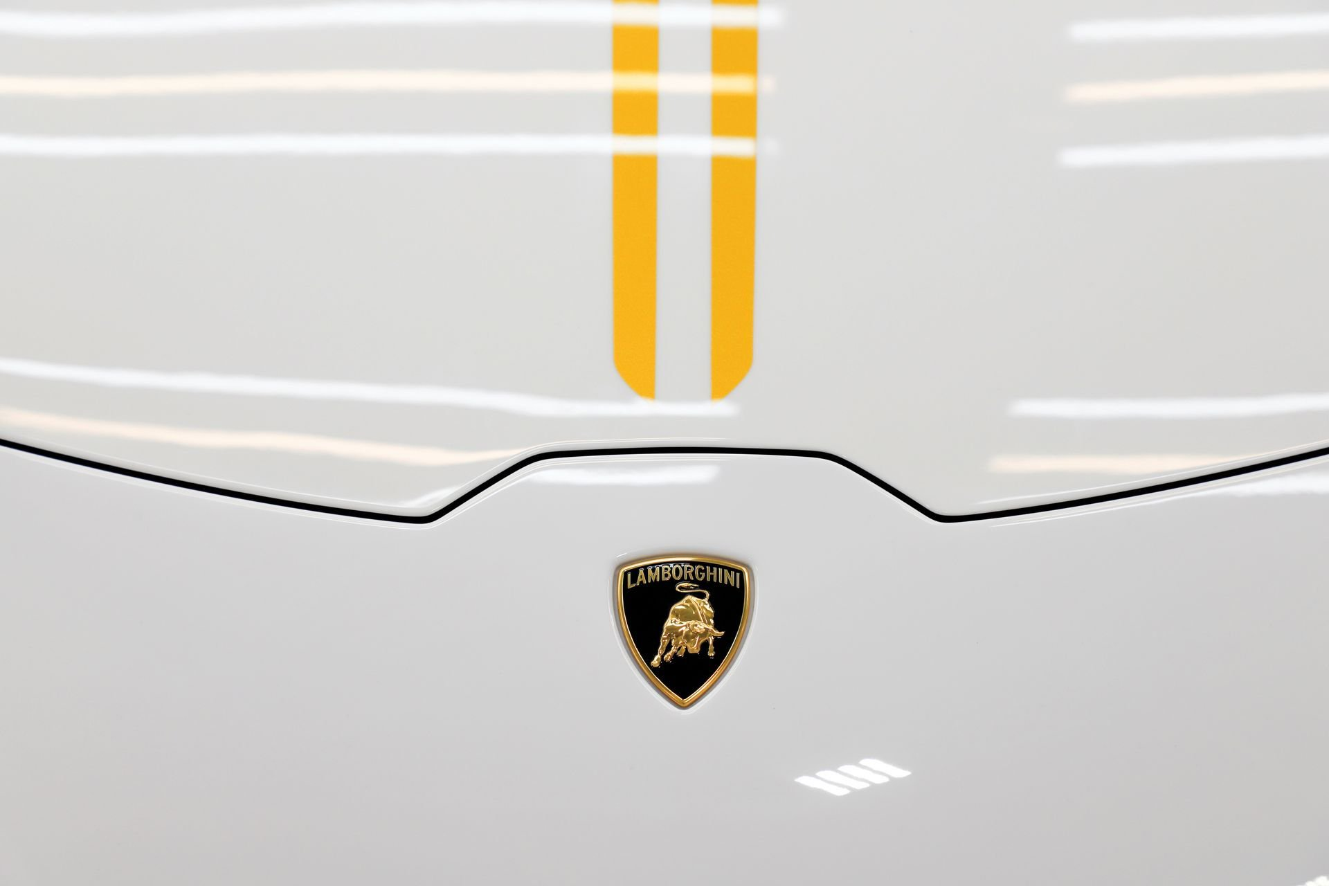 Pope-Lamborghini-Huracan-Auction-9.jpg