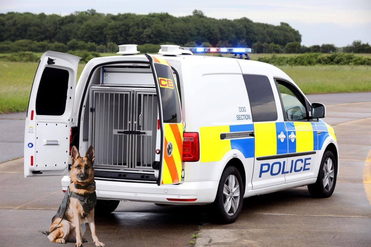 Dog-Van-1.jpg