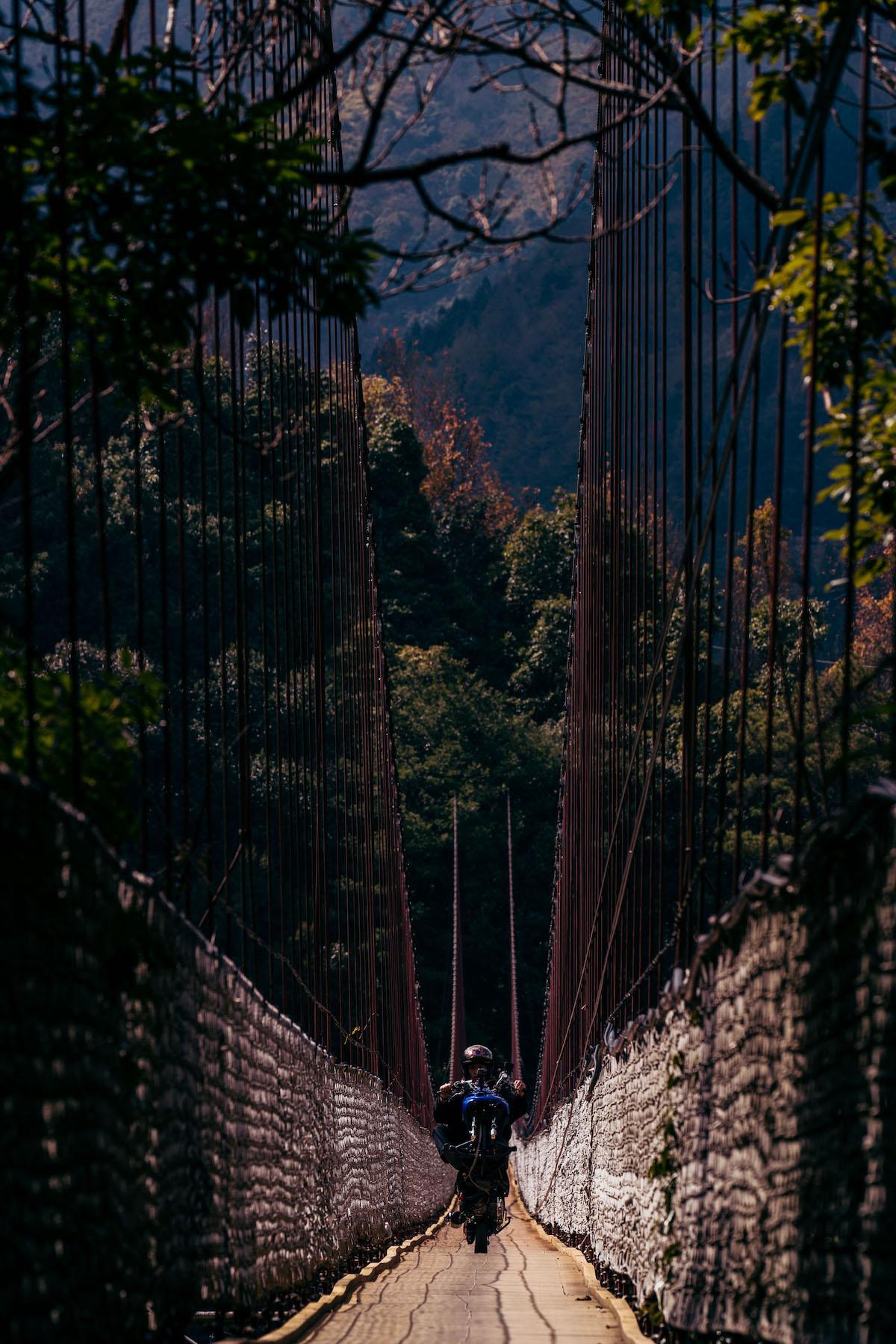 新佳陽吊橋1.jpg